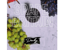 Hookah mix <br> Daly Code Grape Britain